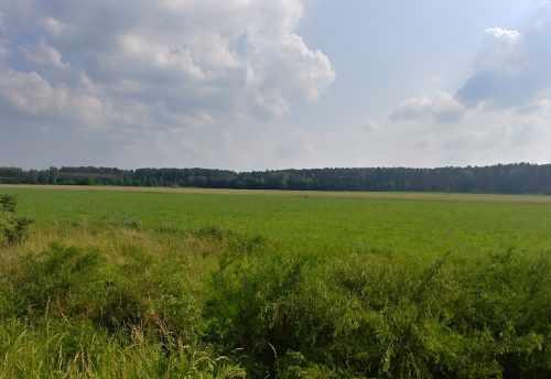 INVESTMENT LAND NIETOPEREK